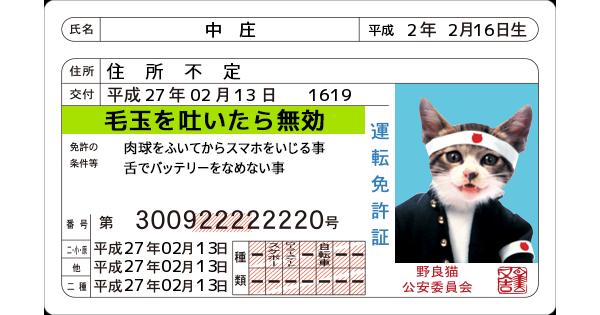 なめ猫免許取得!!   有限会社システムコミュニケイト